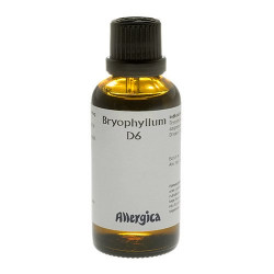 Bryophyllum D6 (50 ml)